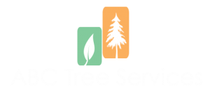 abctreeservices_white_logo